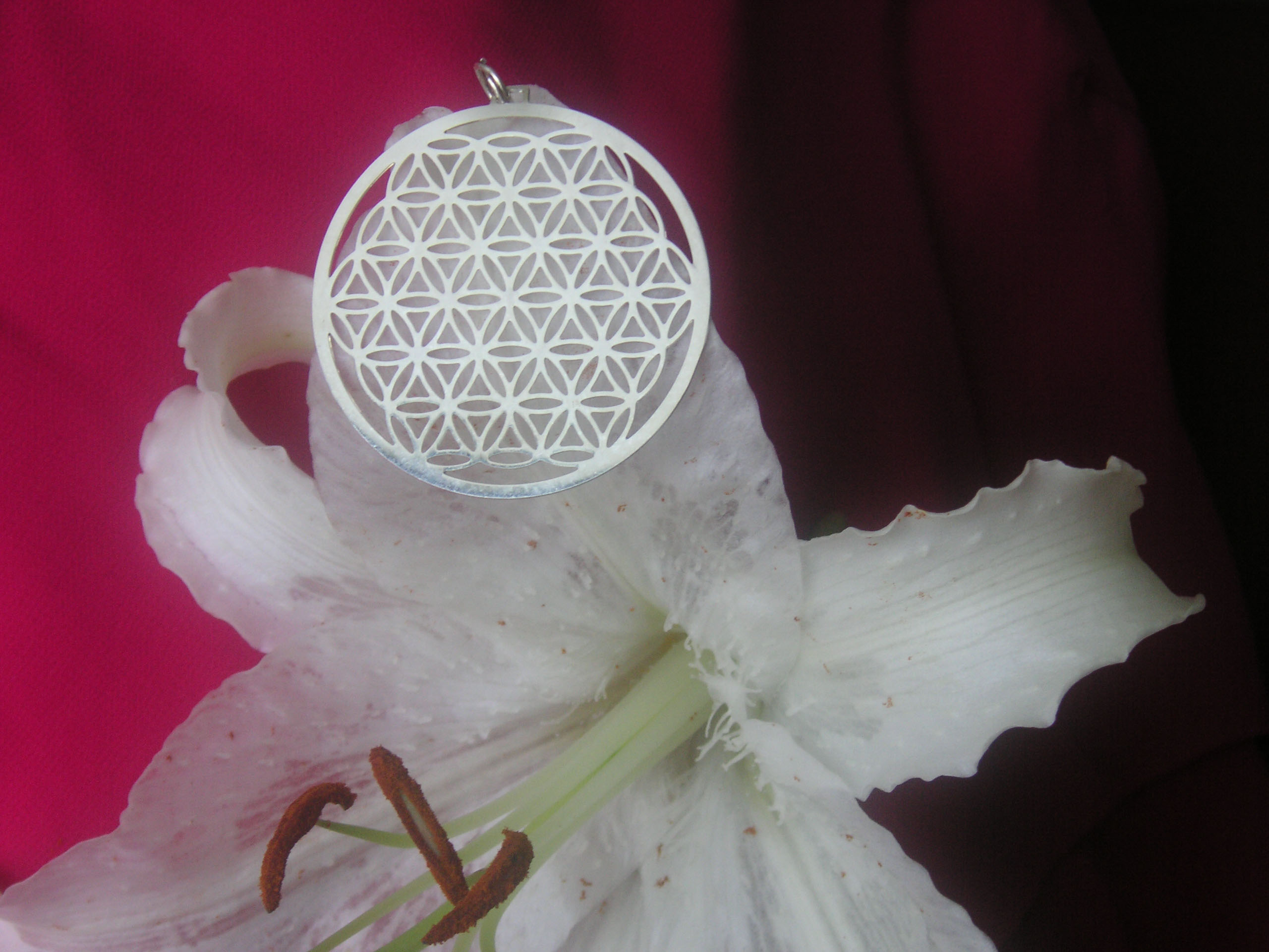 Flower of Life in Silver