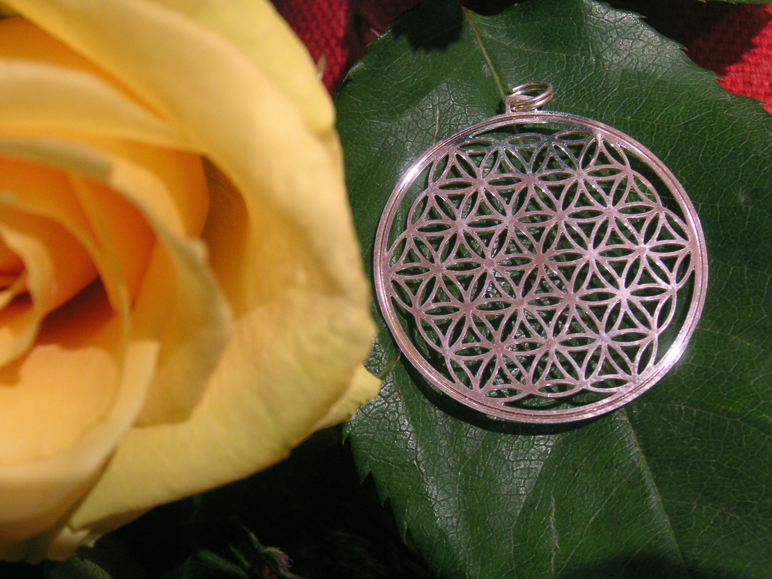 Flower of Life Gold
