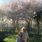cherry_blosson_mary_melisa-16